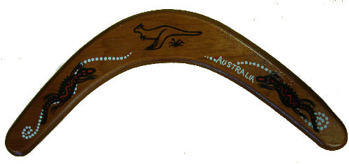 Boomerang Returning (14inch)